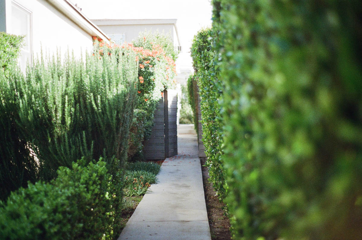 Garden Design Planning And Landscaping Constructionwriters Org